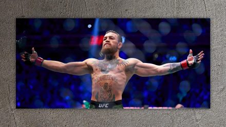 Conor McGregor schilderij