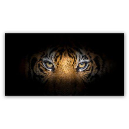 Tiger eyes schilderij