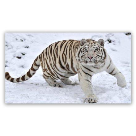 white tiger 2 schilderij