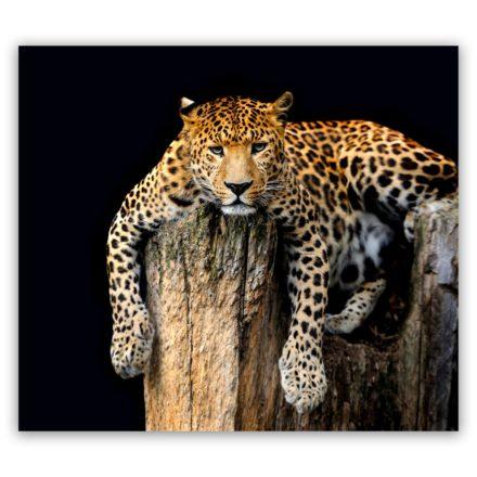 Luipaard liggend schilderij