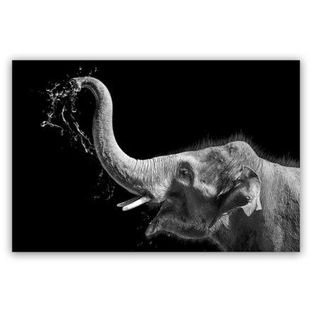 olifant met water schilderij